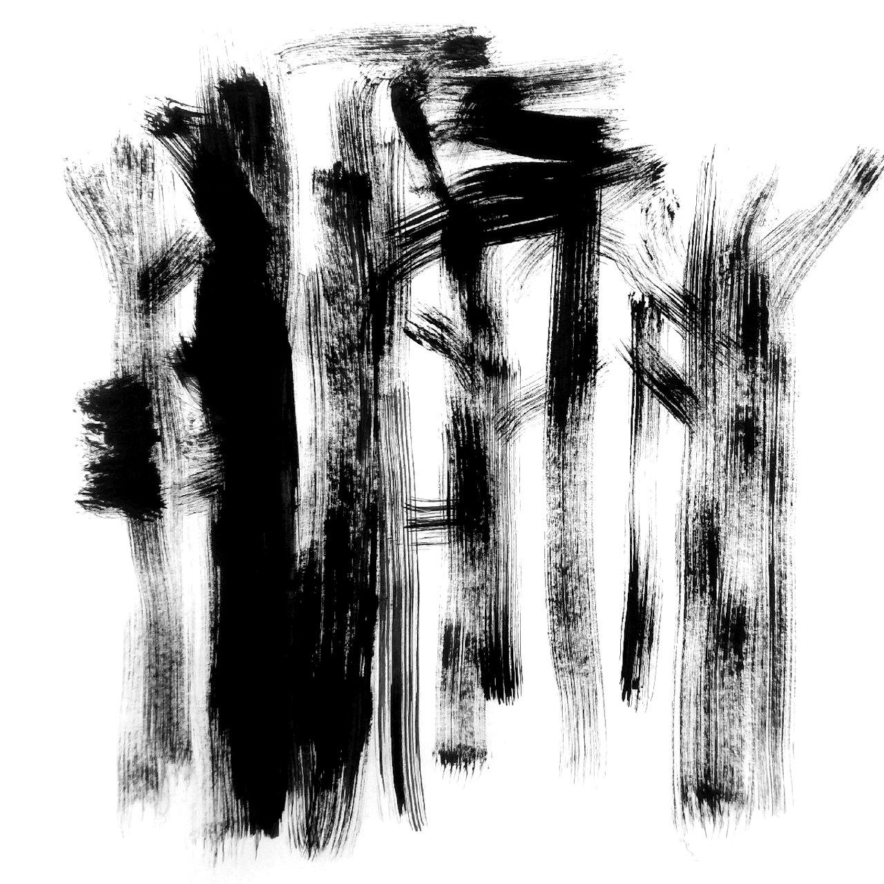 davide catania - alberi
